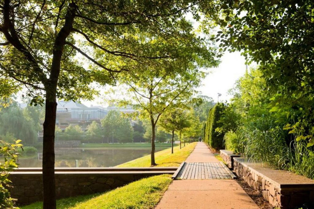 Green Spaces at the Contemplative Commons at the University of Virginia. © Nelson Byrd Woltz