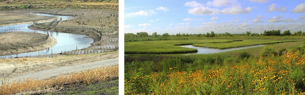 View of the Paradise Creek Nature Park's constructed wetland under construction and current condition
